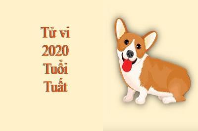 Tử vi tuổi Tuất năm 2020