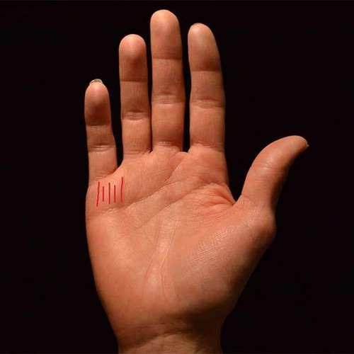 Phụ nữ mang mệnh phượng hoàng thường có sáu kiểu bàn tay