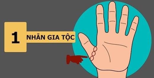Dấu hiệu bàn tay cho thấy người ngồi mát ăn bát vàng, số hưởng cả đời
