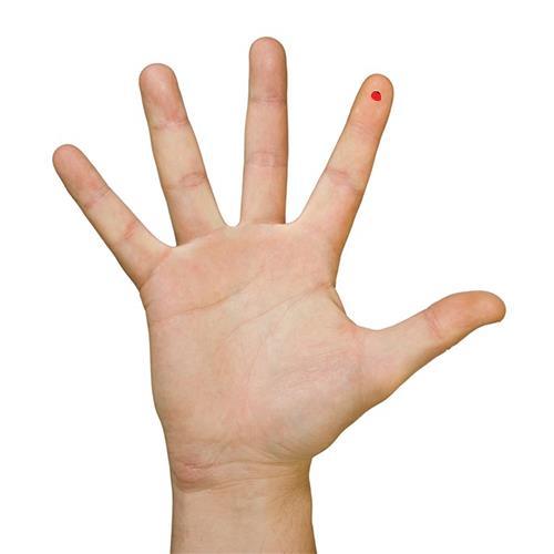 Độ dài ngắn và hình dạng từng ngón tay nói lên tính cách, vận mệnh con người