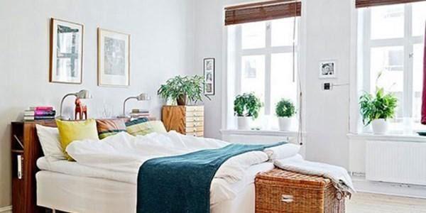 Bố trí cây cảnh trong nhà theo phong thủy tại phòng ngủ