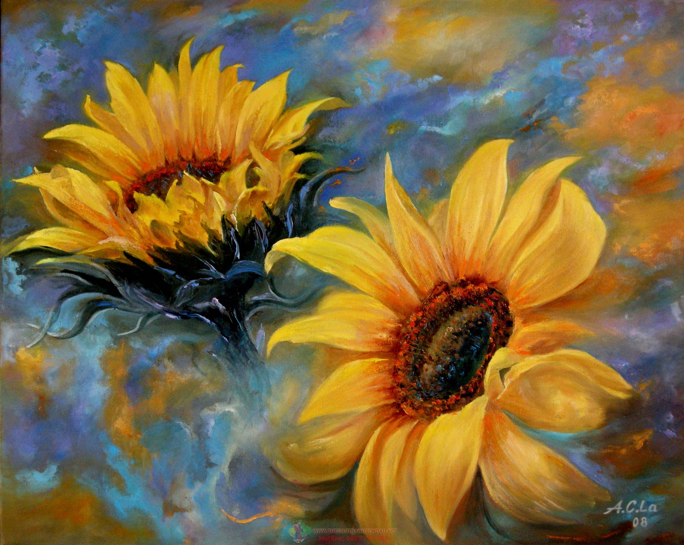 hoa hướng dương phong thuỷ