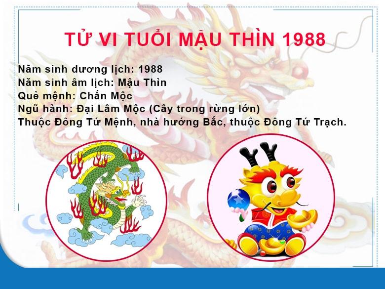 huong-dat-ban-ghe-lam-viec-tot-cho-nguoi-tuoi-mau-thin